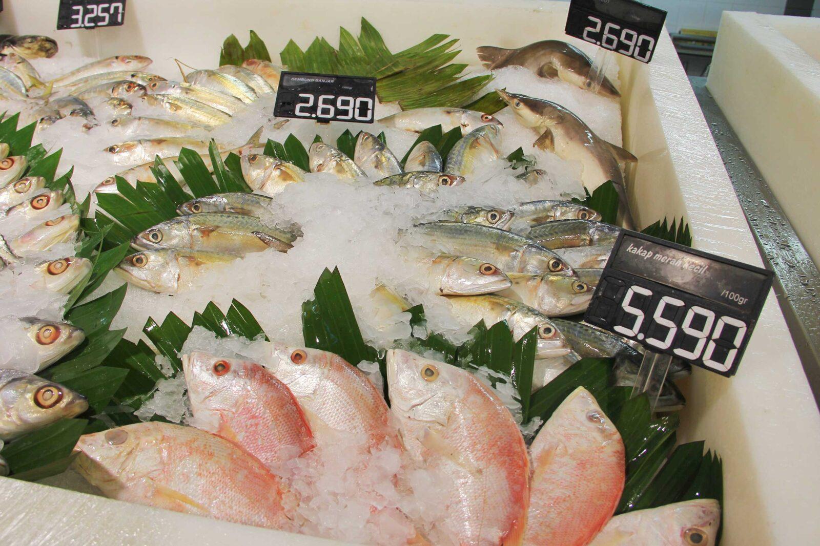 Pesan dari Dokter Tan: Ikan Jangan digoreng!