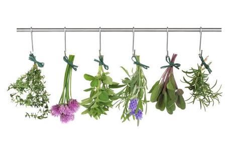 Terapi Bunga Bach Flower Remedies: Terapi Cegah Penyakit dan Penuaan Dini dengan Sari Bunga