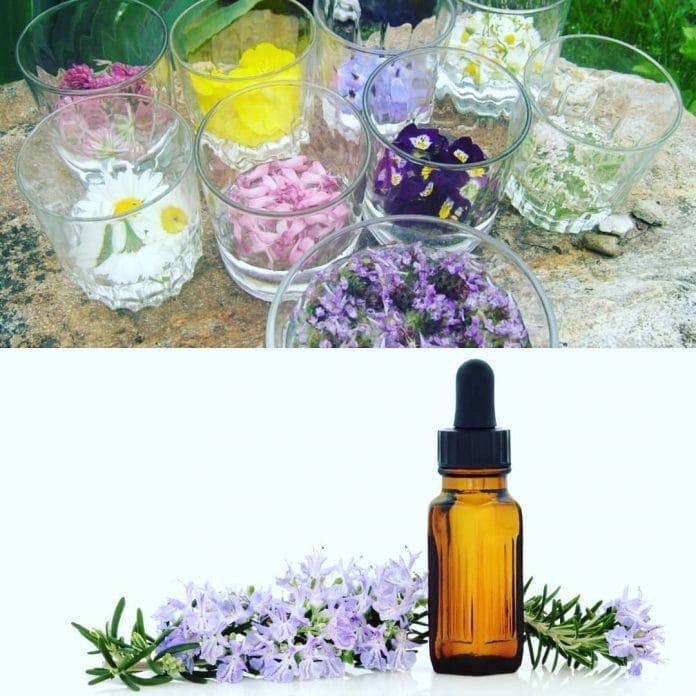 Bach Flower Remedies: Sehat Emosi dengan Bach Flower Remedies (Percakapan Komunitas Paprika Living & Ayu Sadewo)