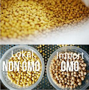 Tempe Lokal dan GMO