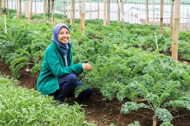 Resign Untuk Menjalani Hidup Lebih Sehat ~ Sandra Alfina Sunkrisps