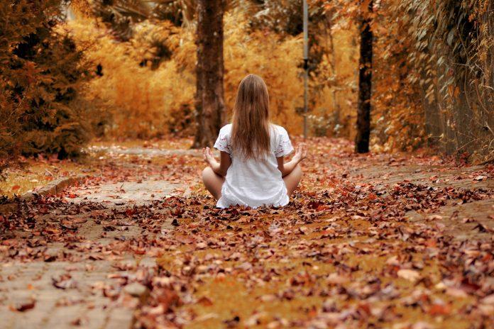 Ternyata Rasa Segar Ketika Kita Berjalan di Hutan, Bukan Karena Banyak Oksigen