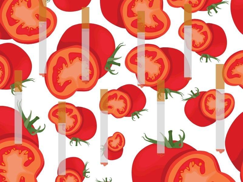 Tomat baik untuk perokok