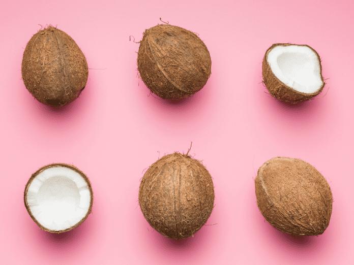 kelapa santan