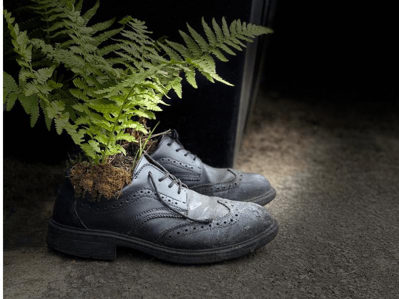 upcycle sepatu